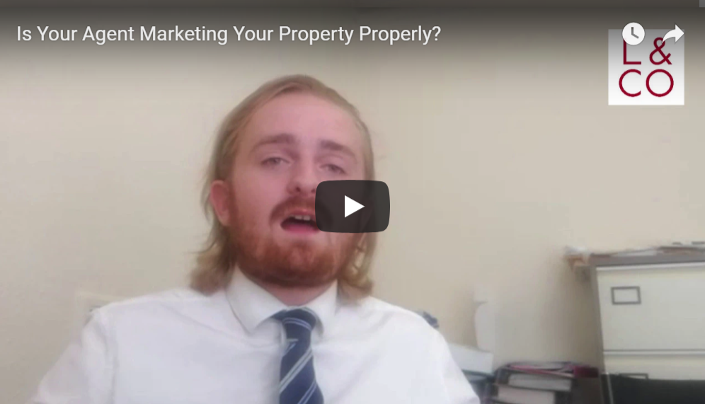 estate agent giving advice
